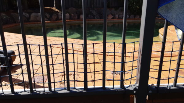 Macarthur Vet Puppy Proofing 2