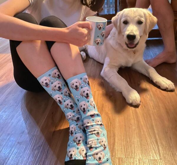 Macarthur Vet Puppy Mischief! 8