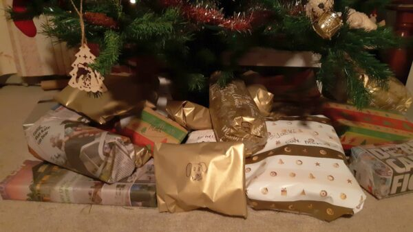 Macarthur Vet Chisel's First Christmas 1