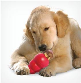 Macarthur Vet Environmental Enrichment to Help Your Dog Combat the Winter Blues 3